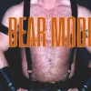 Muscled and hairy like a bear. Become powerful as a bear